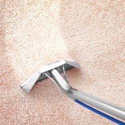 Carpet Cleaner | Episode 542 | Complete Carpet