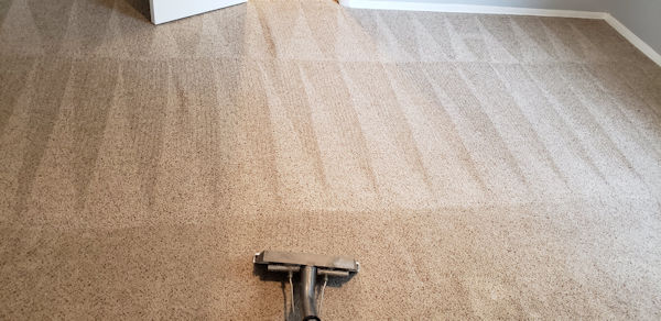 Carpet Cleaning in Tulsa | We Are So Vital to Our Customers