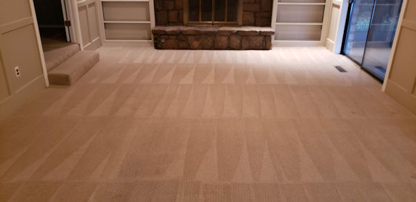 Best Carpet Cleaning Service in Tulsa | Say Our Name, Say Our Name