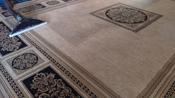 Carpet Cleaning Services | More Than A Place To Go For Carpets?