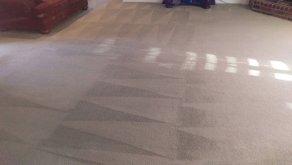 Carpet Cleaner | Episode 514 | Complete Carpet