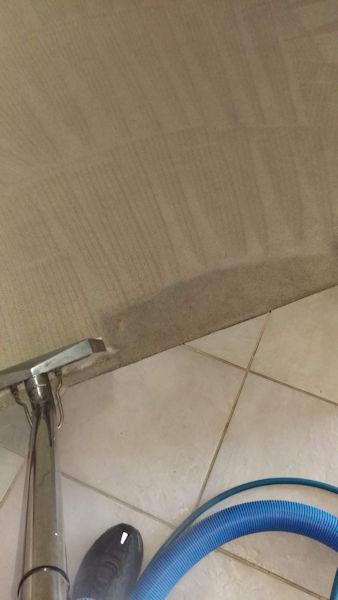 Carpet Cleaner | Episode 512 | Complete Carpet