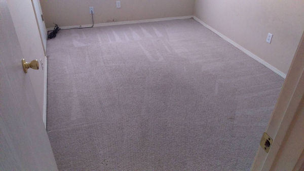 Carpet Cleaner | Episode 500 | Complete Carpet