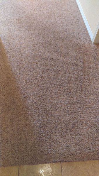 Carpet Cleaning Tulsa | Episode 496 | Complete Carpet