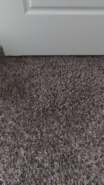 Carpet Cleaning In Tulsa | We Want To Help You