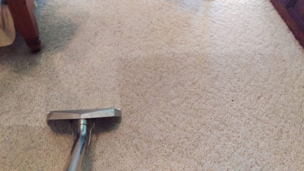 Carpet Cleaning Near Me | Stop Searching!